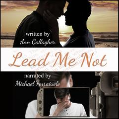 Lead Me Not by Ann Gallagher audiobook