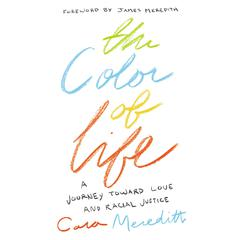 The Color of Life by Cara Meredith audiobook
