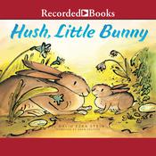 Hush, Little Bunny by  David Ezra Stein audiobook