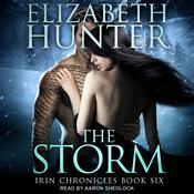 The Storm by  Elizabeth Hunter audiobook