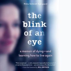 The Blink of an Eye by Rikke Schmidt Kjærgaard audiobook