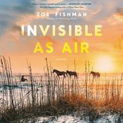 Invisible as Air by  Zoe Fishman audiobook