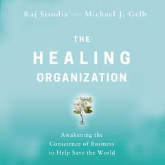 The Healing Organization by Raj Sisodia audiobook