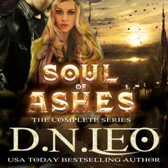 Soul of Ashes by D.N. Leo audiobook