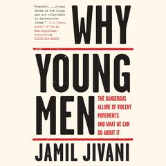 Why Young Men by Jamil Jivani audiobook