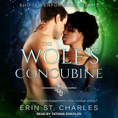 The Wolf's Concubine by Erin St. Charles audiobook