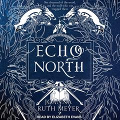 Echo North by Joanna Ruth Meyer audiobook