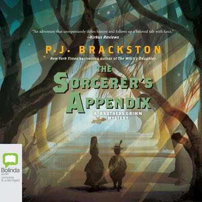 The Sorcerer's Appendix by P. J. Brackston audiobook