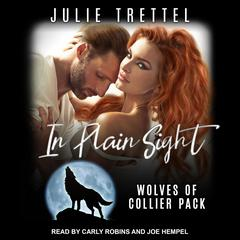 In Plain Sight by Julie Trettel audiobook