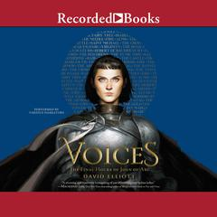 Voices by David Elliott audiobook