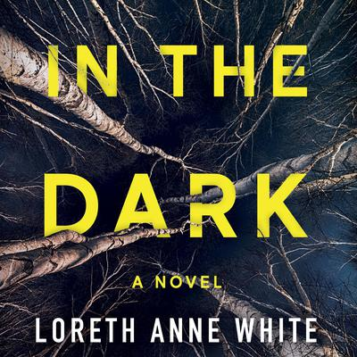 In the Dark by Loreth Anne White audiobook