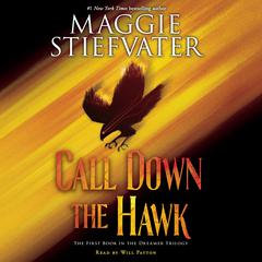 Call Down the Hawk by Maggie Stiefvater audiobook