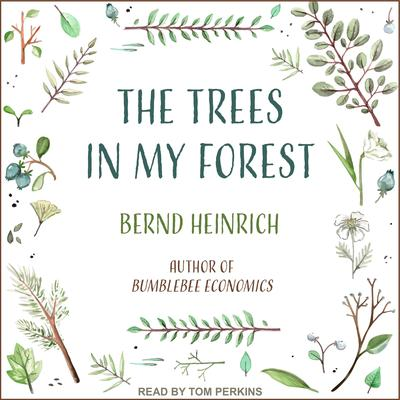 The Trees in My Forest by Bernd Heinrich audiobook