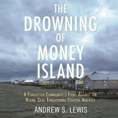 The Drowning of Money Island by Andrew S. Lewis audiobook