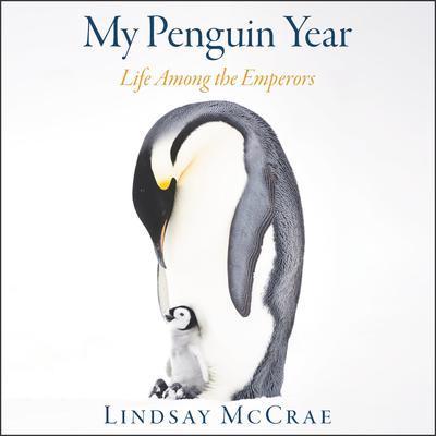 My Penguin Year by Lindsay McCrae audiobook