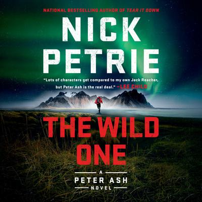 The Wild One by Nick Petrie audiobook