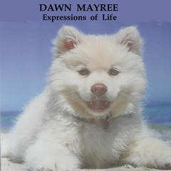 Expressions of Life by Dawn Mayree audiobook