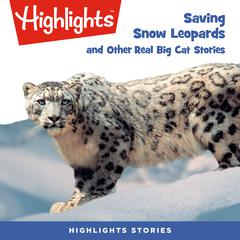Saving Snow Leopards and Other Real Big Cat  Stories by Highlights for Children audiobook