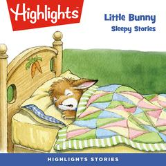 Little Bunny: Sleepy Stories by Eileen Spinelli audiobook