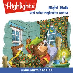 Night Walk and Other Nighttime Stories by various authors audiobook