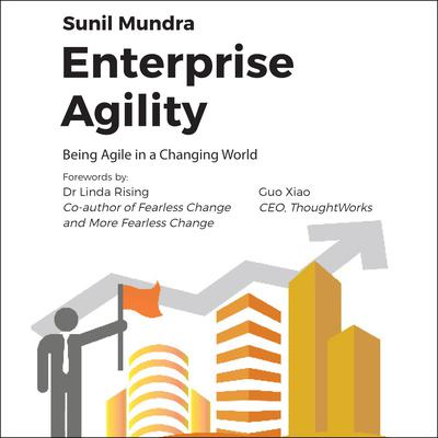 Enterprise Agility by Sunil Mundra audiobook