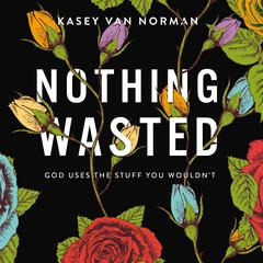 Nothing Wasted by Kasey Van Norman audiobook