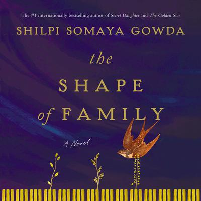 The Shape of Family by Shilpi Somaya Gowda audiobook