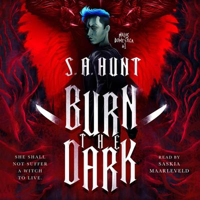Burn the Dark by S.A. Hunt audiobook