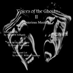 Voices of the Ghost II:  by Amelia B. Edwards audiobook
