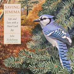 Saving Jemima by Julie Zickefoose audiobook