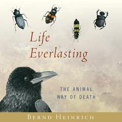 Life Everlasting by Bernd Heinrich audiobook