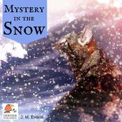 Mystery in the Snow by  J.M. Evans audiobook