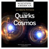 Ultimate Physics by  Scientific American audiobook