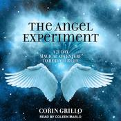 The Angel Experiment by  Corin Grillo audiobook