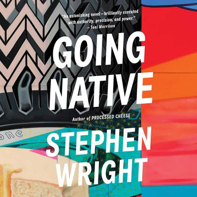 Going Native by Stephen Wright audiobook