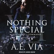 Nothing Special VI by  A.E. Via audiobook