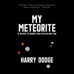 My Meteorite by Harry Dodge audiobook