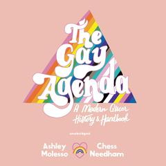 The Gay Agenda by Ashley Molesso audiobook