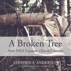 A Broken Tree by Stephen F. Anderson audiobook