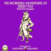 The Incredible Adventures Of Reddy Fox by  Thornton Burgess audiobook