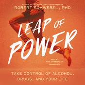 Leap of Power by  Robert Schwebel PhD audiobook