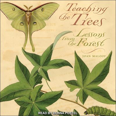 Teaching the Trees by Joan Maloof audiobook