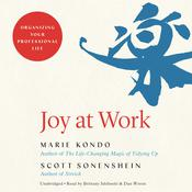 Joy at Work by  Scott Sonenshein audiobook