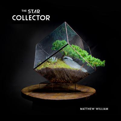 The Star Collector by Matthew William audiobook