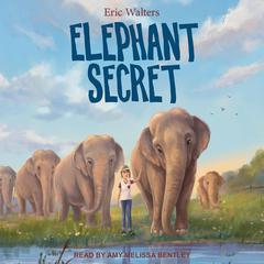 Elephant Secret by Eric Walters audiobook