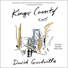 Kings County by David Goodwillie audiobook