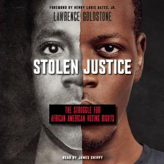 Stolen Justice by Lawrence Goldstone audiobook