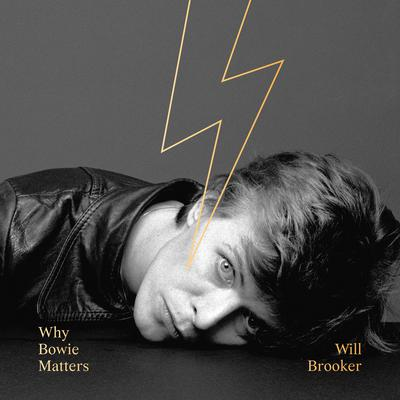 Why Bowie Matters by Will Brooker audiobook