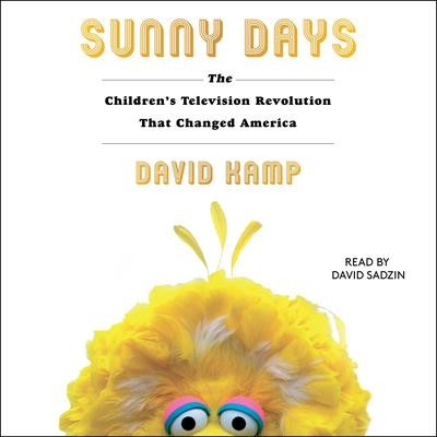 Sunny Days by David Kamp audiobook