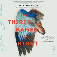 The Thirty Names of Night by Zeyn Joukhadar audiobook